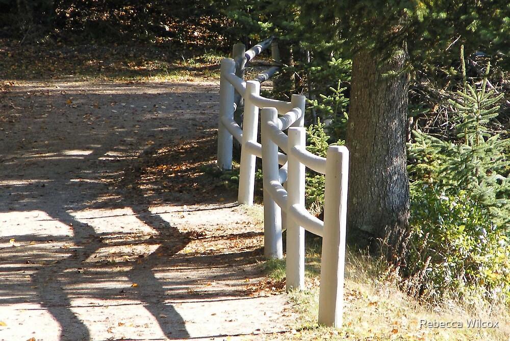 Pathway by Rebecca Brann