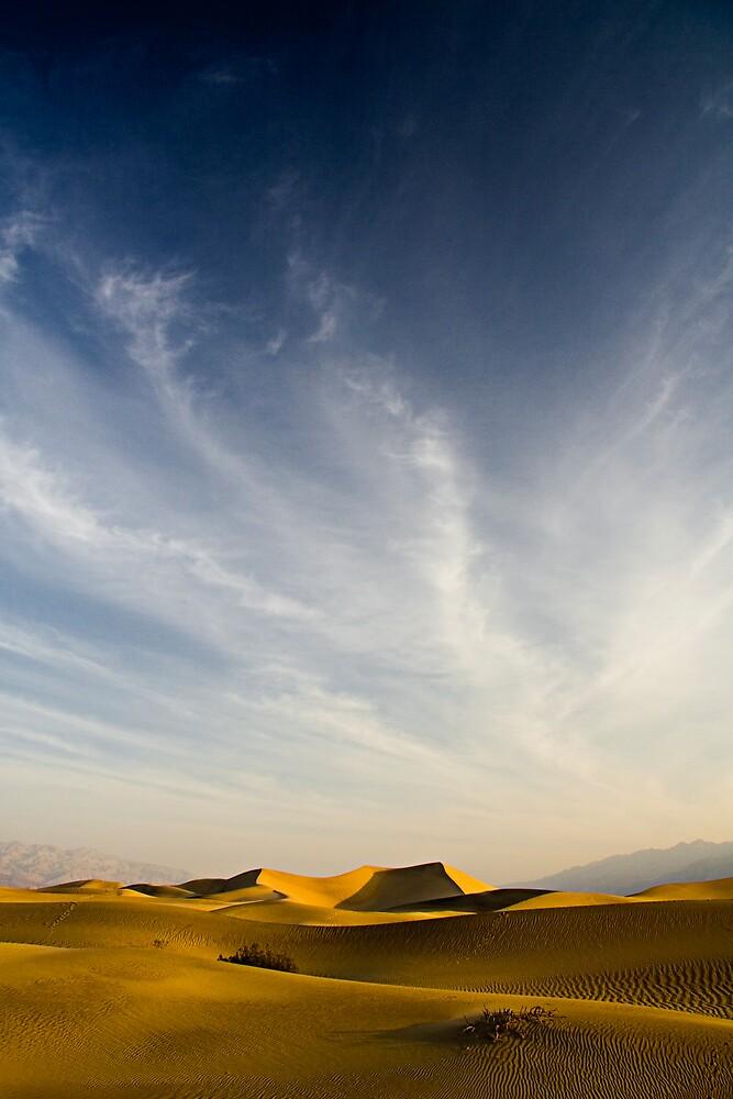 The Desert by morealtitude