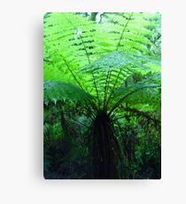 Forest Fronds Canvas Print