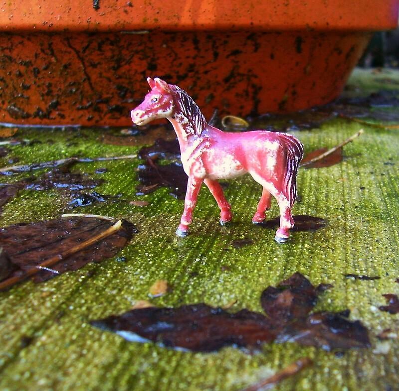 Tiny Pony by Natania Rogers