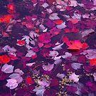 RED LAkE FALL by tachamot