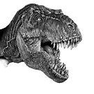 «Dino» de Heleacla
