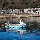 Somni E582 - Lyme Regis Harbour by Susie Peek