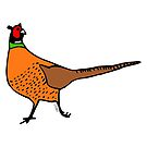 Pheasant Illustration by Hannah Sterry