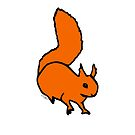Red Squirrel by Hannah Sterry