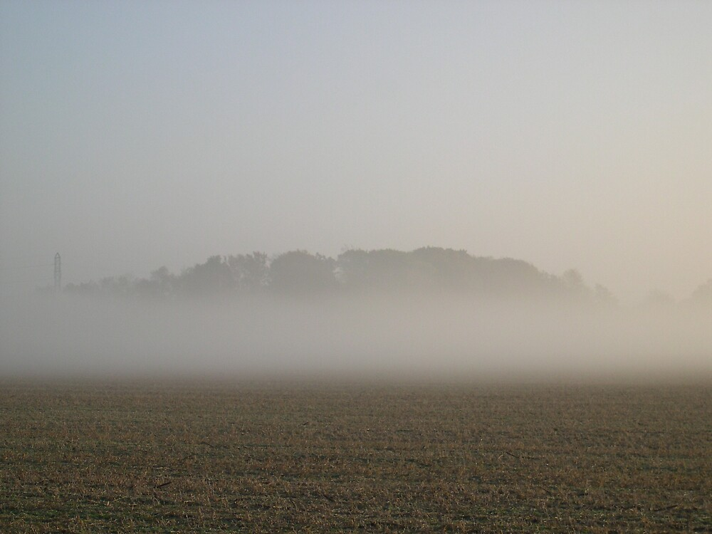 foggy morning in Indiana by Dianna