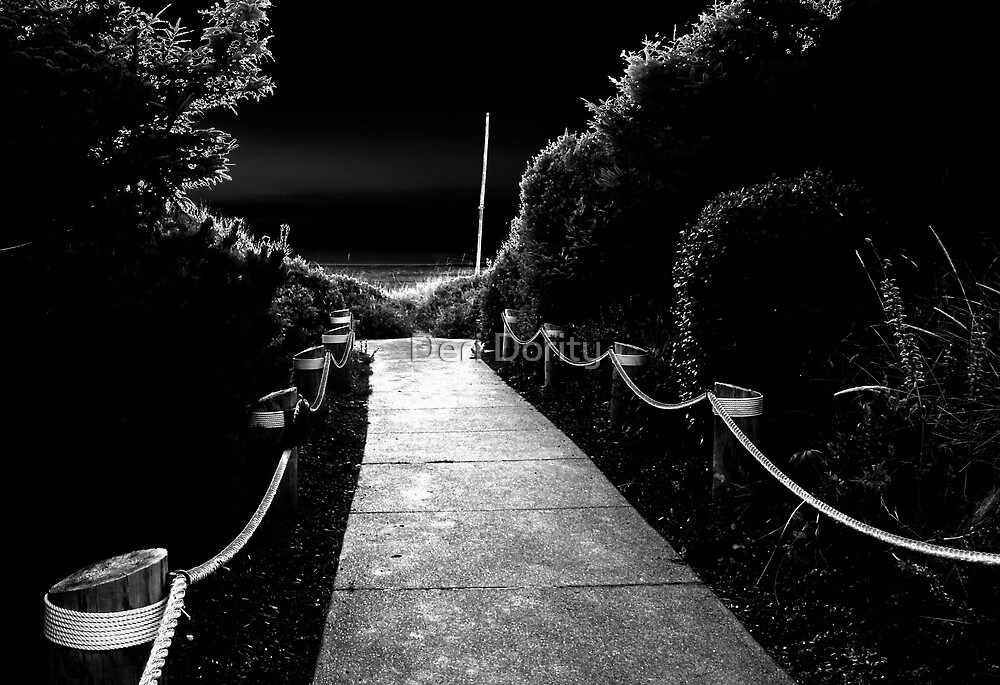The Path to the Beach by Deri Dority