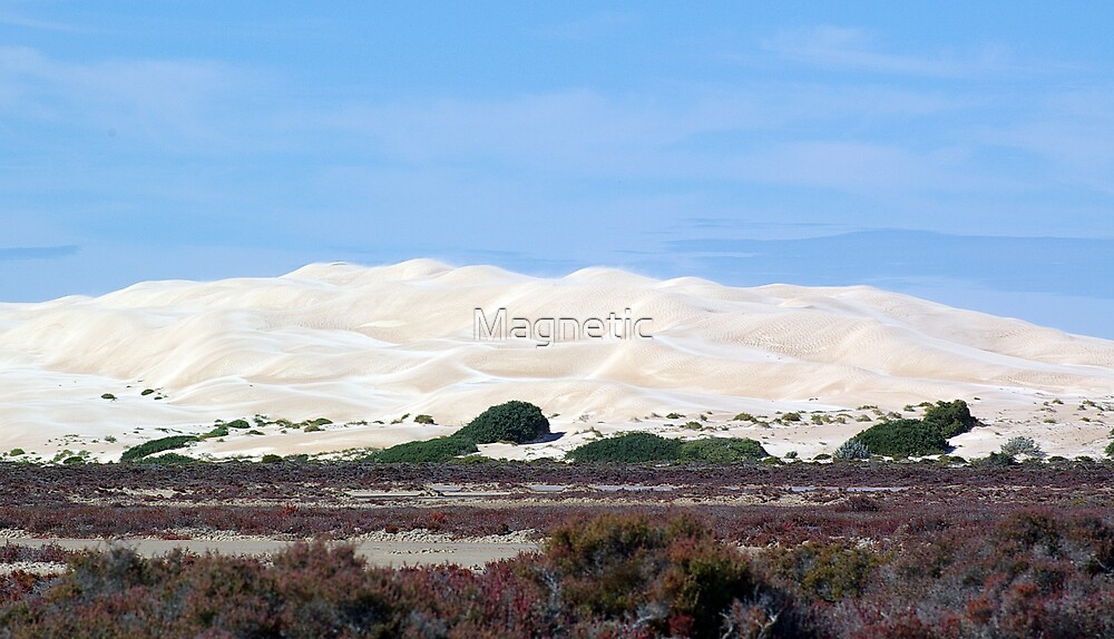 Blown Sand Dunes by Magnetic