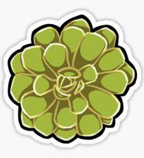 Succulent - Aeonium Sticker