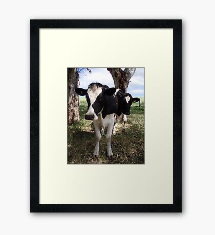 Mooooo Too Framed Print