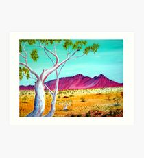 McDonald Range Ghostgum Art Print