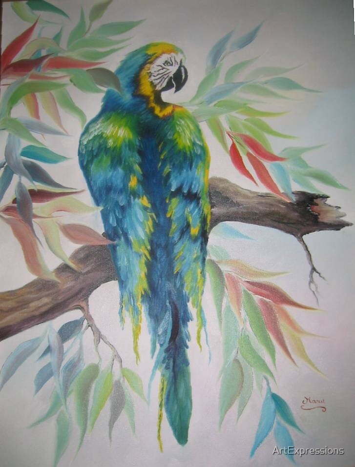 Amazonia by ArtExpressions