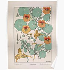 Plante et Ses Applications Ornementales Ornamental Plants Grasset Eugene Maurice Pillard Verneuil 1896 Art Nouveau 0079 Nasturtium Poster
