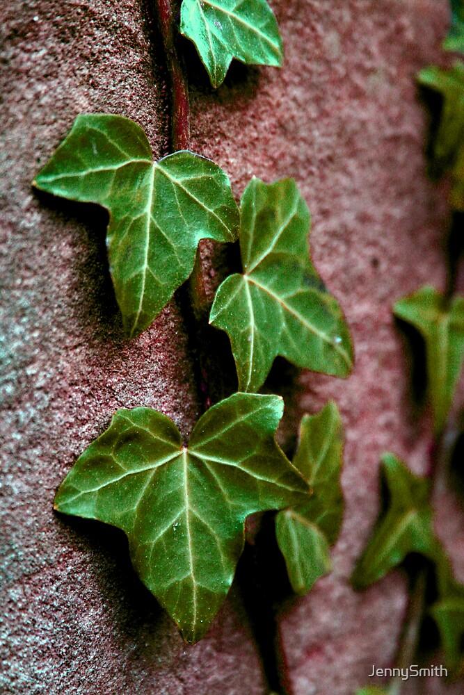 ivy by JennySmith