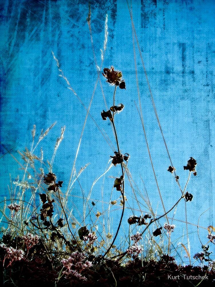Blue by Kurt  Tutschek