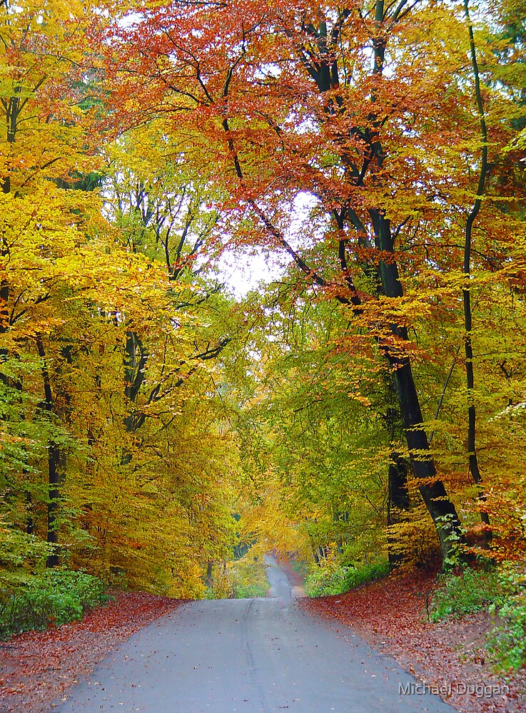 Autumn In Germany by Michael Duggan