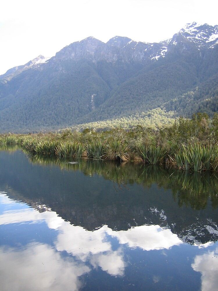 Te Anau New Zealand Mirror Pools by Deeful