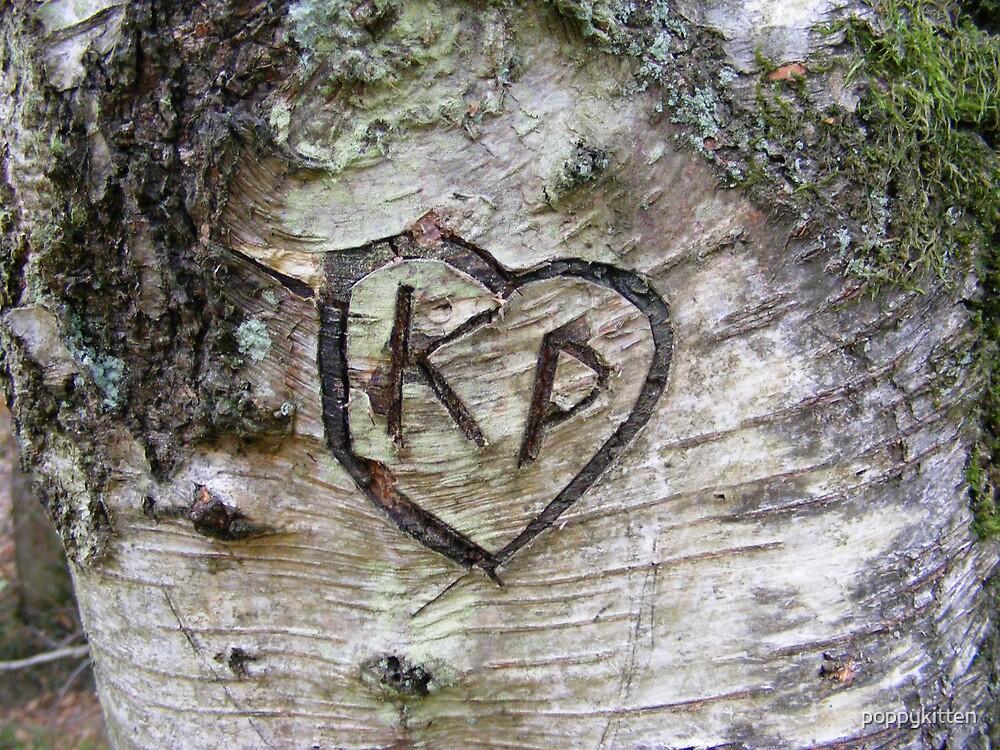 Love Is............... by poppykitten