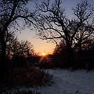 Snowy Sunset by Debra Fedchin