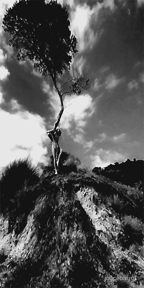Wind by joycebarry1