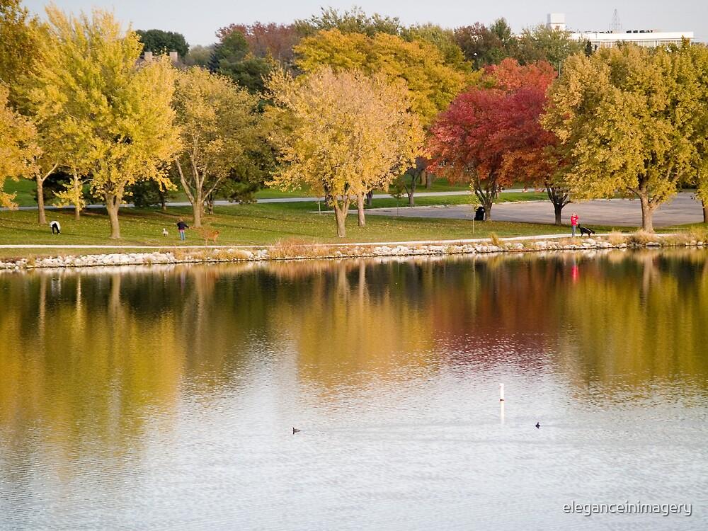 Autumn Stroll by eleganceinimagery