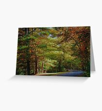 Fall in Hickory Run State Park Greeting Card