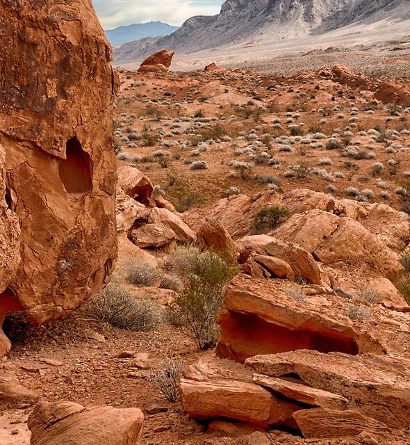 Red Rocks at the Valley of Fire by Jerry Deutsch