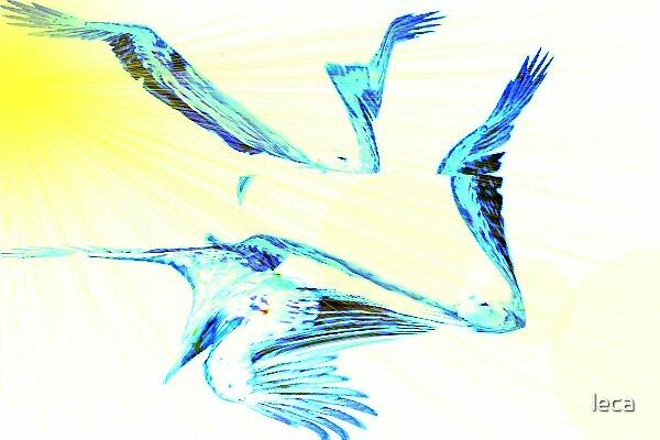 Eagles in Flight by leca