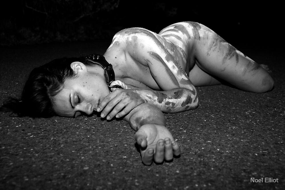 Road Kill # 7 by Noel Elliot
