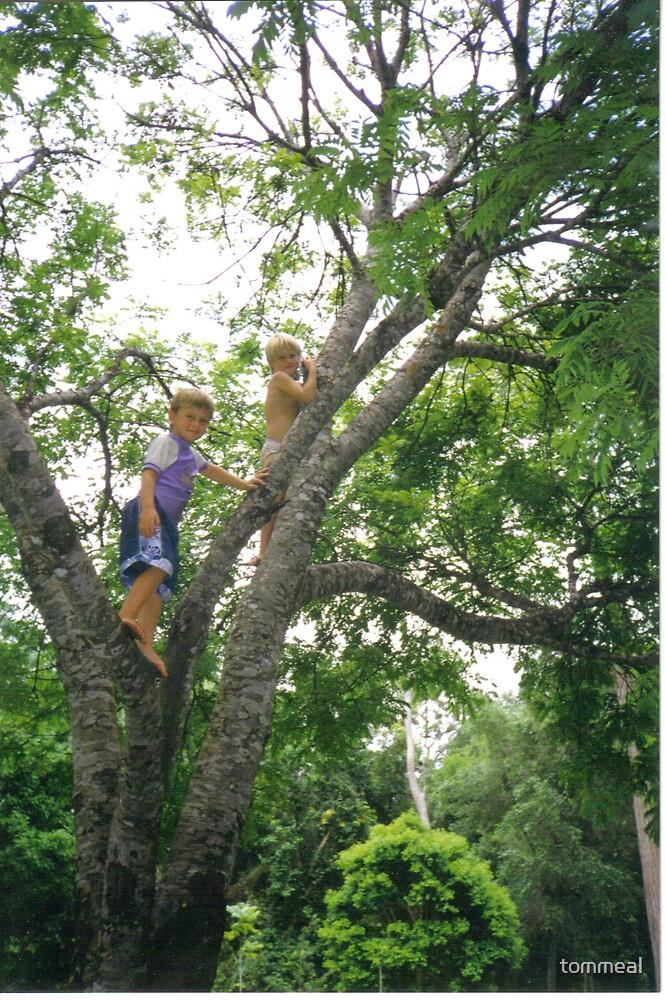 Tarzan & jane  kids in a tree by tommeal