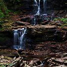 F.L. Ricketts Falls by Debra Fedchin