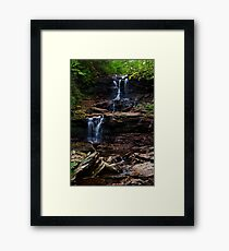 F.L. Ricketts Falls Framed Print