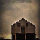 The barn with a smile by Debra Fedchin