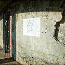 Gunnison Battery # 1 by Debra Fedchin