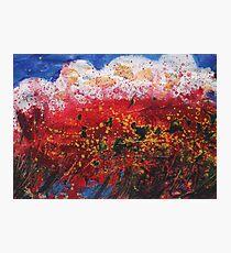 Wildflower Storm  Photographic Print