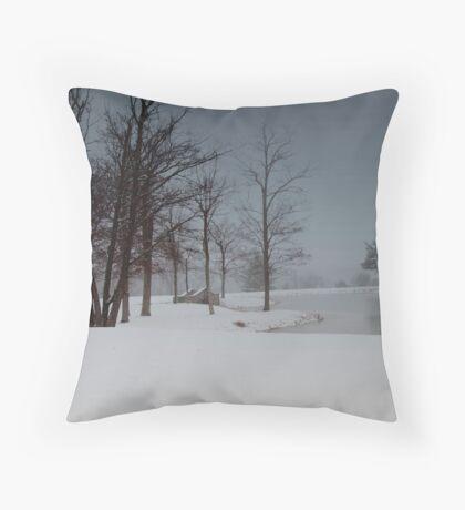A Snow Day # 1 Throw Pillow