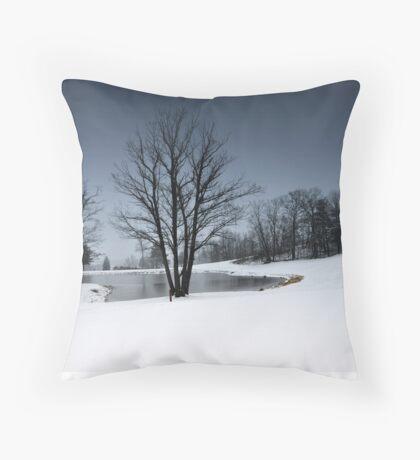 A Snow Day # 2 Throw Pillow