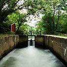 The Griggstown Lock by Debra Fedchin