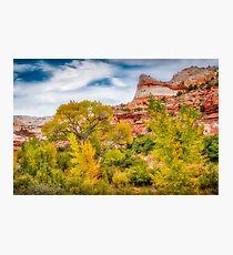 Autumn in the Escalante Valley Photographic Print