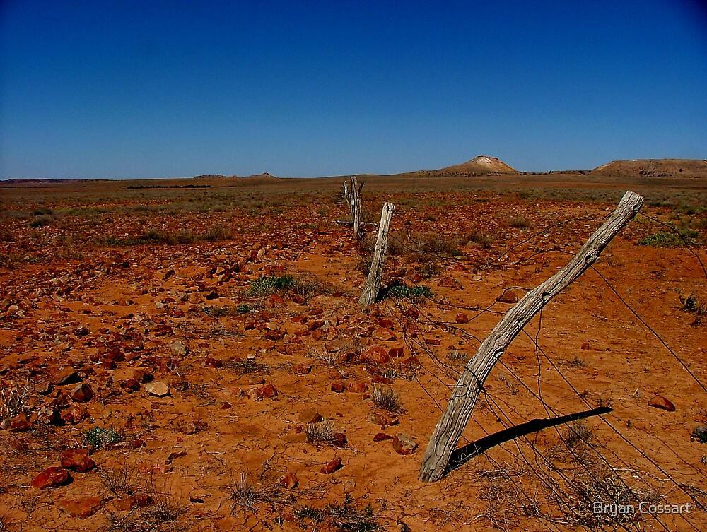 Desert Fence by Bryan Cossart