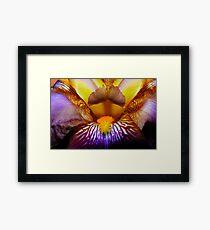 Inside An Iris Framed Print