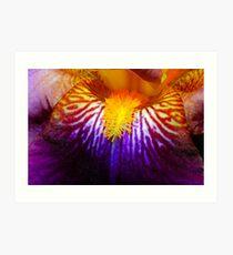 Inside An Iris 2 Art Print