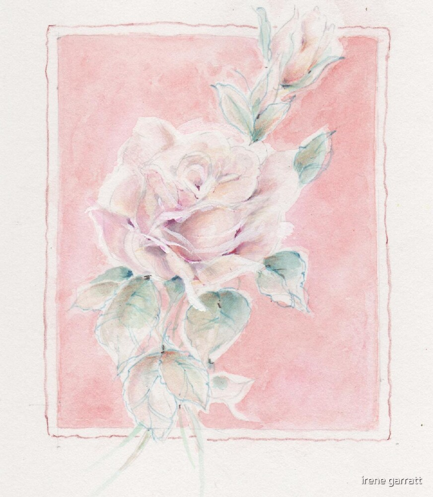 A rose for a special person by irene garratt