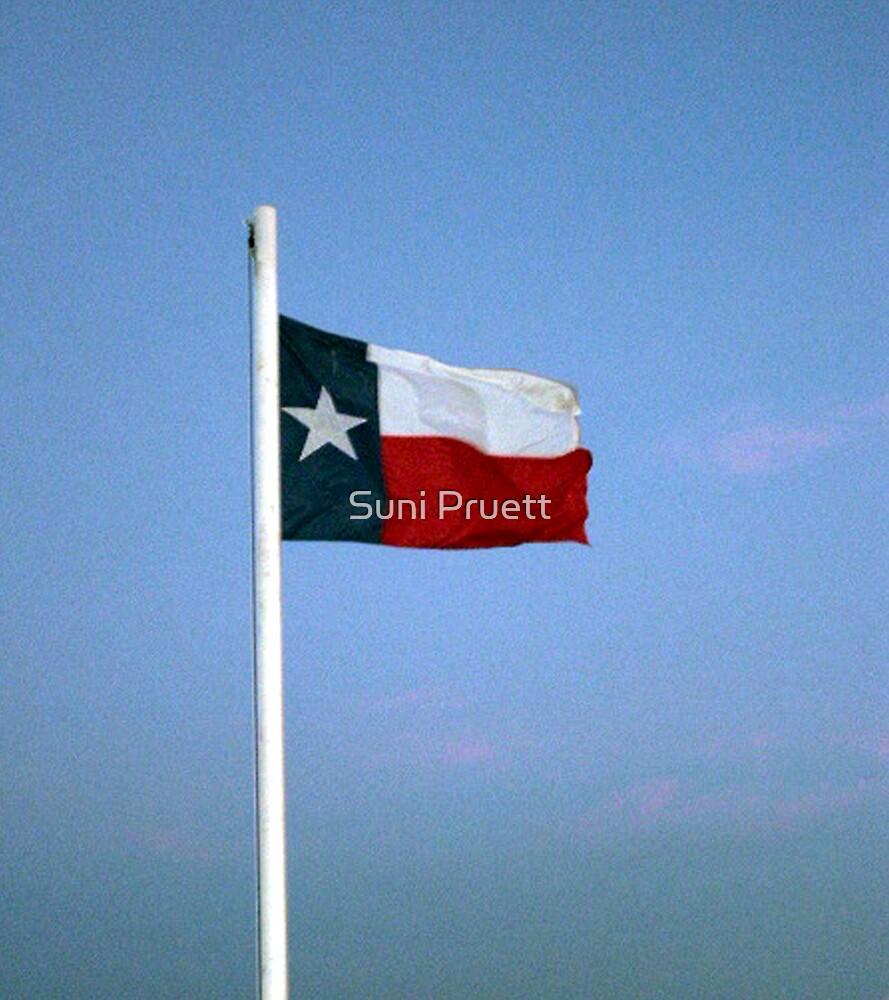 Greetings From Texas by Suni Pruett