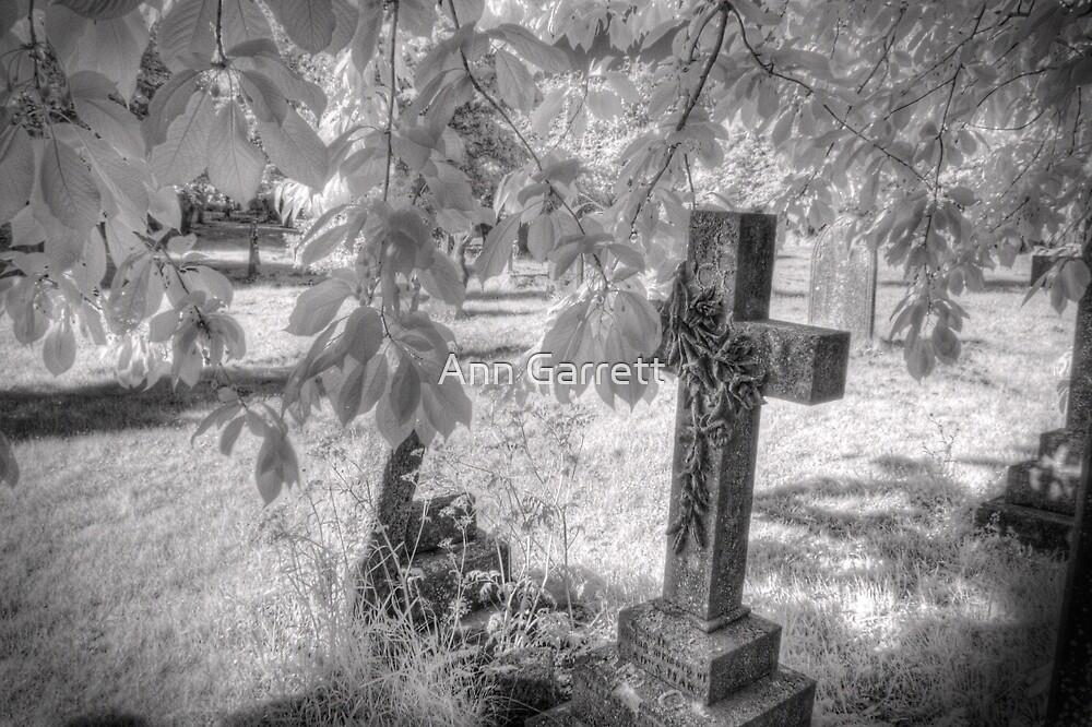 Infrared Graveyard by Ann Garrett