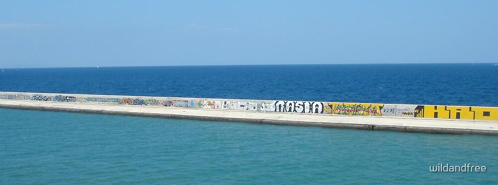 Ocean Grafitti by wildandfree