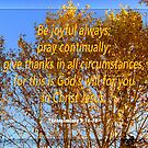 Give Thanks! by Ruth Palmer
