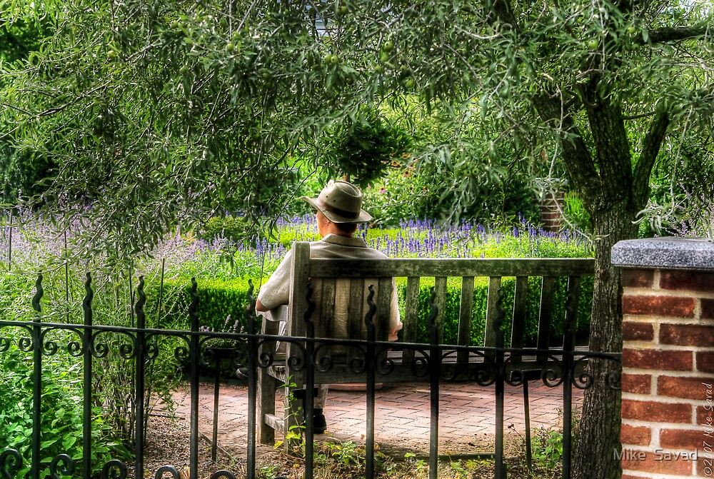Man on a bench by Mike  Savad