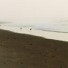 Misty Morning at Island Beach State Park by Debra Fedchin
