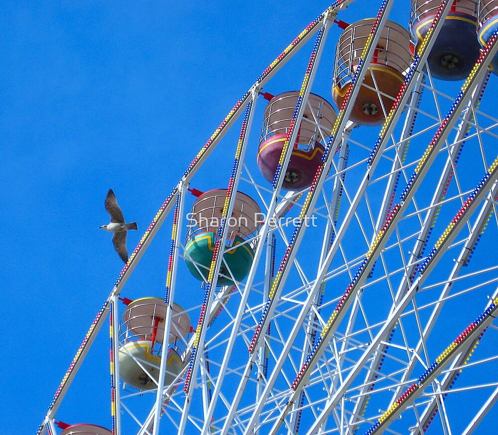 As high as a bird by Sharon Perrett
